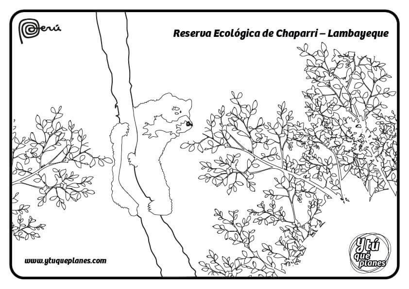 Reserva Ecológica de Chaparri