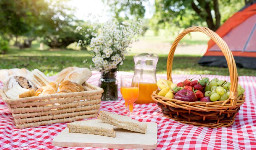 Lugares ideales para hacer un picnic con los niños